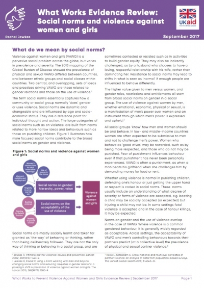 Social Norms Evidence Brief