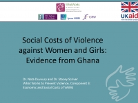 Social Costs of Violence against Women and Girls: Evidence from Ghana