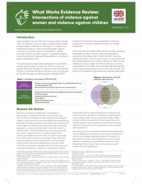 What Works Evidence Review: Intersections of violence against women and violence against children