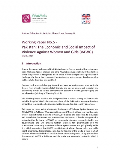 Working Paper No.5- Pakistan: The Economic and Social Impact of Violence Against Women and Girls (VAWG)
